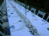 alba_catering32_luxury_banqueting