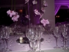alba_catering54_luxury_banqueting