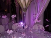 alba_catering57_luxury_banqueting